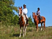 Riding on the Berici hills
