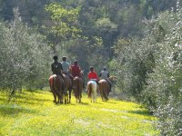 A group of guests of the Bed and Breakfast Paglia and Fieno as they leave for the walk