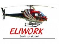Eliwork