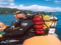 Diving sulle coste liguri