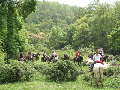 Agriturismo Torre Prima Passeggiate a Cavallo