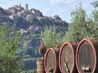 dove produciamo il vino