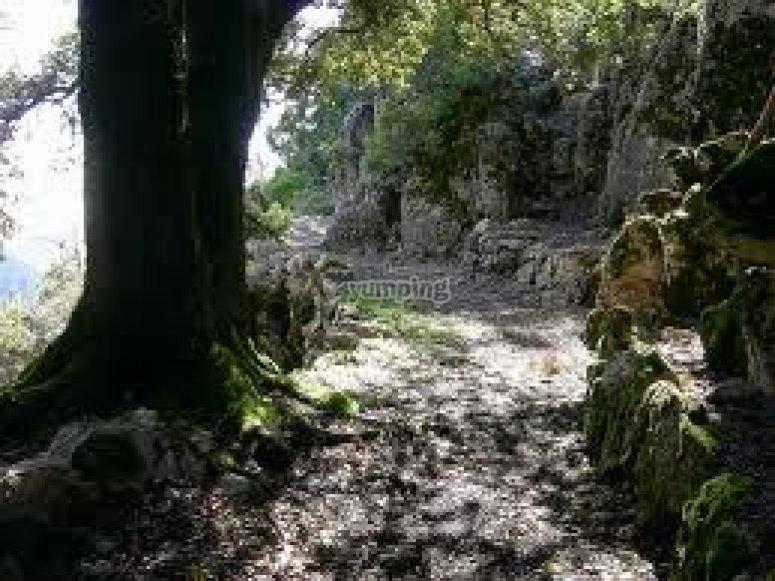 un sentiero da percorrere