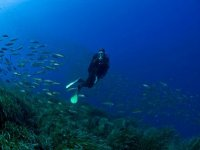 Immersioni con Profondo Blu