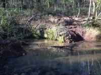 Pozzo di S. Lorenzo in Foresta Umbra