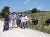 con gli amici tedeschi e le capre sopra Passignano sul Trasimeno - Perugia