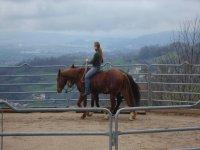 Girotondo a cavallo