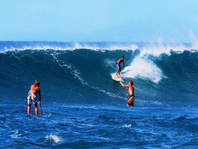 Associazione WaveTrotter Surf