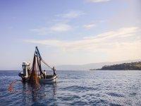 long fishing in tropea