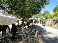 Soggiorno e escursioni equestri nella Sabina