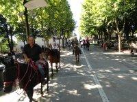 Passeggiate a cavallo a Montebuono