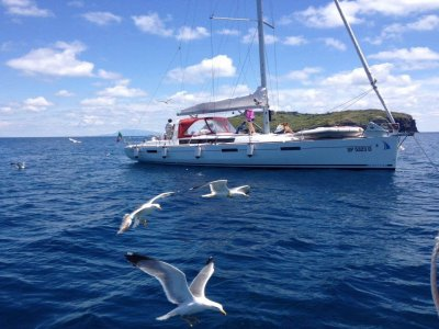 BlueDream Sailing Chart Escursioni in Barca