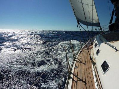 Bluenose Yachting Vela