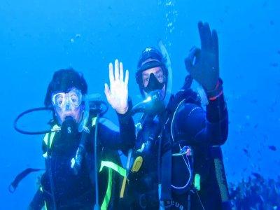 Gorgonia Tour Diving