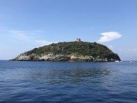Cirella's island