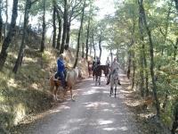 Escursione a cavallo con pernottamento in fattoria