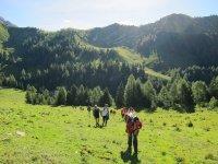 Trekking tra i monti