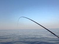 le pesca in mare