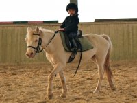 Pony Club dai 4 anni