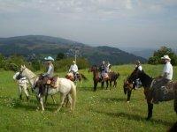 Equitazione di Campagna e Trekking