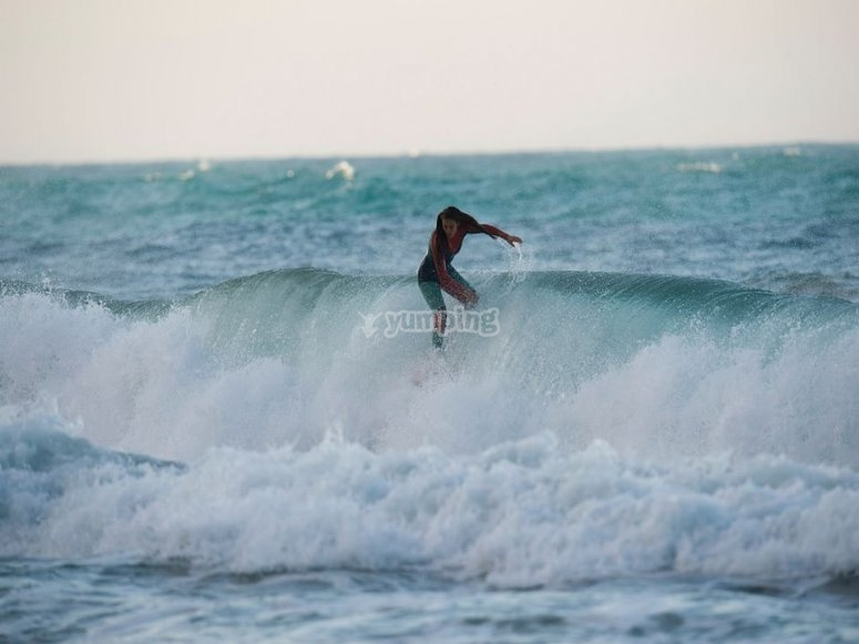Noleggio surf