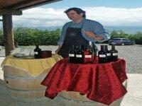 Taste Campania wines
