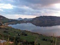 The vineyards of the Campi Flegrei
