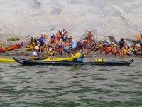 Canoa in compagnia