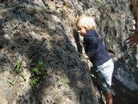 Piccoli arrampicatori crescono