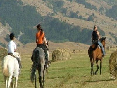 Siamo a Cavallo