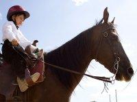 Equini docili