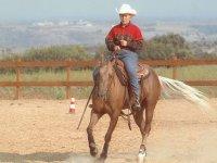 Intere giornate a cavallo