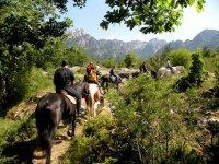 Scoprire l'Abruzzo equestre