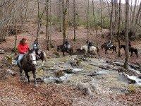 Trekking a cavallo sui ruscelli