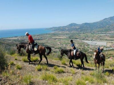 Cilento Horse Riding