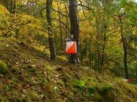 Orienteering, un segnale nel bosco.