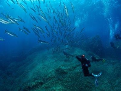 Iknòs Sardinia Sea Activities Diving