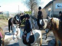 Pony e cavalli