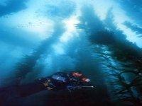 Immersioni Trimix