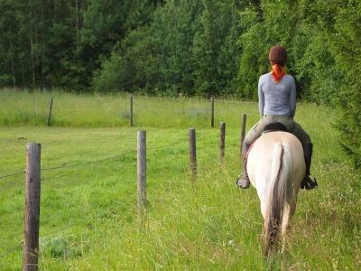 3-hour horseback ride to Borso del Grappa
