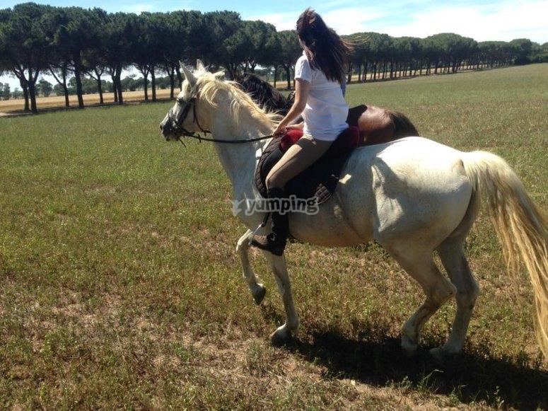 avventura a cavallo
