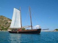 Trips in sailing ship