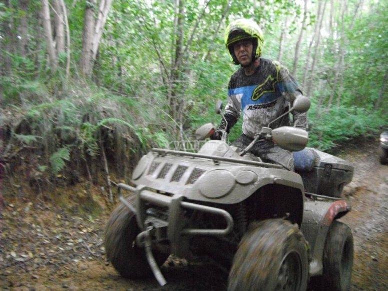 in quad
