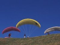 Try the hang glider