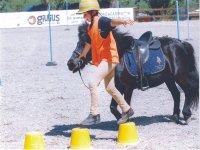 Imparare a vivere con il cavallo