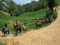 le nostre passeggiate a cavallo