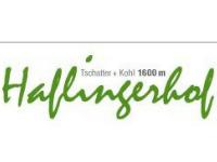 logo Haflingerhof
