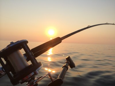 Pesca d'altura (mezza giornata), Fiumicino