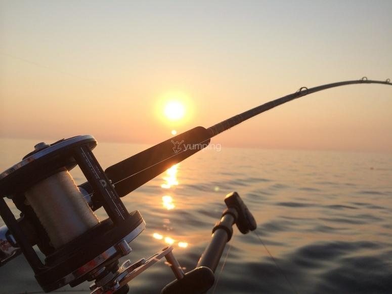 Pesca altura