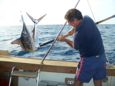 Pesca d'altura (giornata completa), Fiumicino